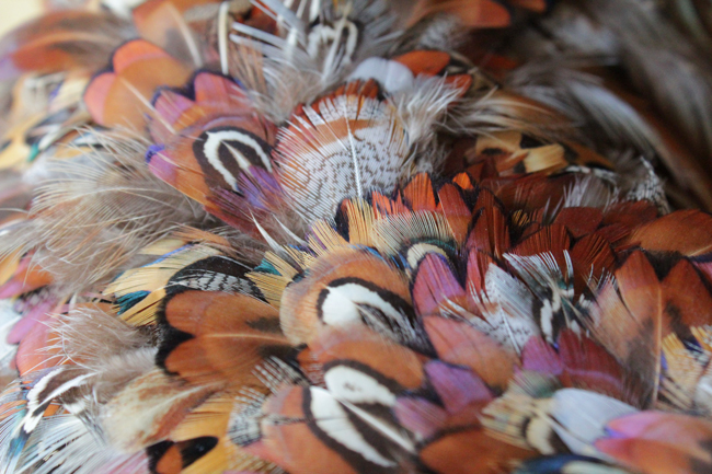 How-to: Pheasant Feather Wreath | HandsOccupied.com
