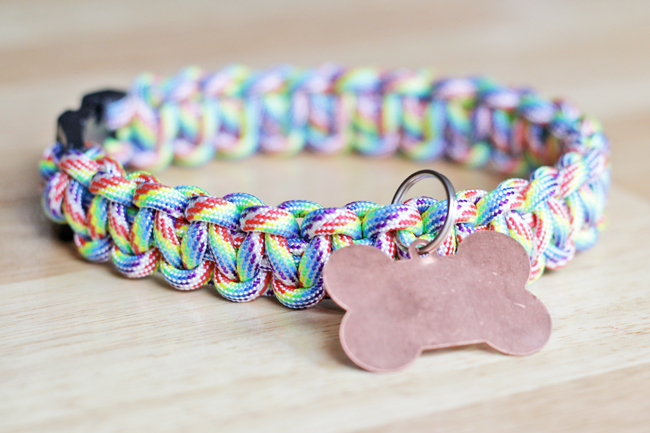 How-to: Rainbow Paracord Dog Collar