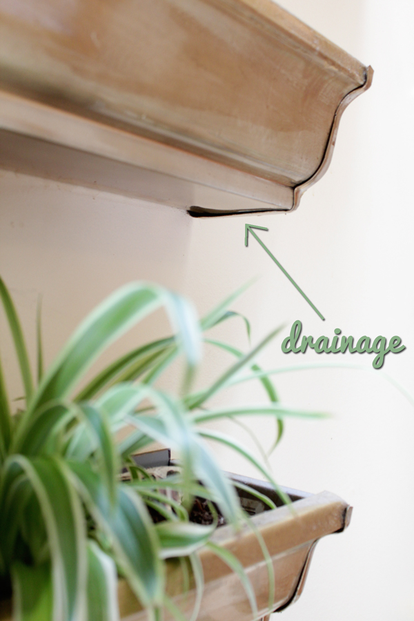 How-to: Maintan an Indoor Gutter Garden
