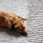 Bulky Knit Rug Pattern